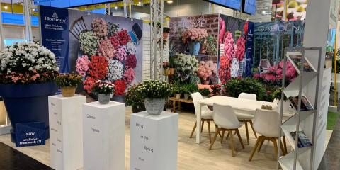 Hortinno at IPM Essen 2019