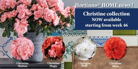 Hortinno News